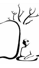 """""""Siamo foglie dello stesso albero"""": Meditazioni del mattino online dal Centro Avalokita"""